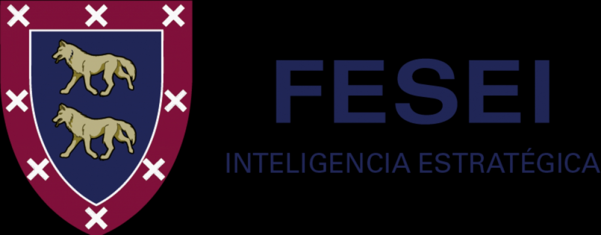 Foundation of Strategic and International Studies (FESEI)